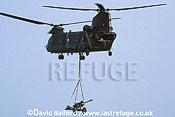 Boeing Vertol Chinook H.C.3 / Chinook HC-3 / Chinook HC3, (underslung field gun), RAF, flying, Royal Naval Air Station (RNAS) Yeovilton, UK, September 2002