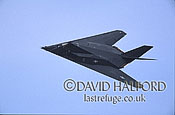 Lockheed Martin F-117A / F.117A / F117A Night Hawk, (HO/823), nose view, 'Black Sheep', Air Combat Command (ACC), USAF, flying, Dover Air Force Base (AFB), Delaware, (DE), USA, May 2002