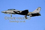 Grumman F-14B / F.14B / F14B Tomcat, (132), VF-101 'Grim Reapers', US Navy (USN), landing, Naval Air Station (NAS) Oceana, Virginia (VA), USA, May 2002