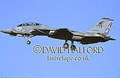 Grumman F-14B / F.14B / F14B Tomcat, (AD/135), VF-101 'Grim Reapers', US Navy (USN), landing, Naval Air Station (NAS) Oceana, Virginia (VA), USA, May 2002