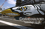 Grumman F-14B / F.14B / F14B Tomcat, nose artwork, VF-11, US Navy (USN), on static, on CV-67 USS John F. Kennedy, Fleet Week, New York City, New York (NY), USA , May 2002