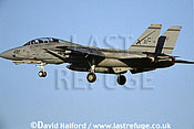 Grumman F-14D / F.14D / F14D Tomcat, (AC/102), VF-32 'Swordsmen', US Navy (USN), landing, Naval Air Station (NAS) Oceana, Virginia (VA), USA, May 2002