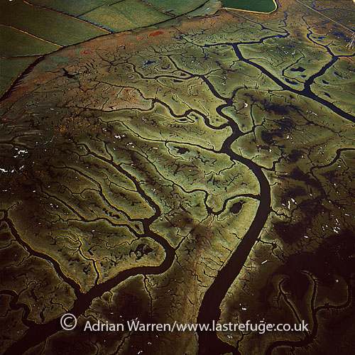 Mud Flats on the river Lune, just SW of Lancaster is a city within Lancashire, England