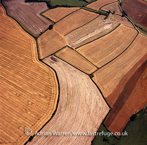 Medieval open fields at Laxton, East Riding of Yorkshire, England