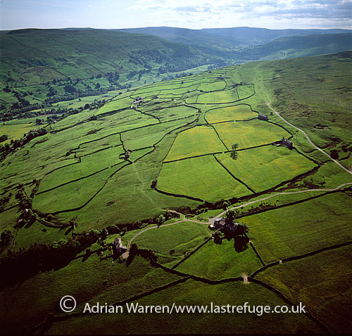 Swaledale, near Crackpot, Yorkshire Dales, North Yorkshire, England