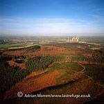 Cannock Chase, Staffordshire, England, designated as the Cannock Chase Area of Outstanding Natural Beauty, England
