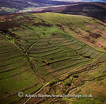 Celtic field system near Grimspound, Dartmoor, Devon, England