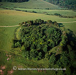 Chanctonbury Ring, hill fort based ring of trees atop Chanctonbury Hill, South Downs, West Sussex. A ridgeway, now part of the South Downs Way, runs along the hill., England