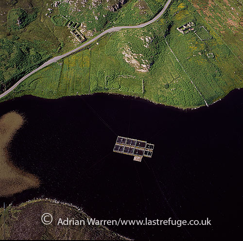 Prawn farming, Lewis, Outer Hebrides, Scotland,