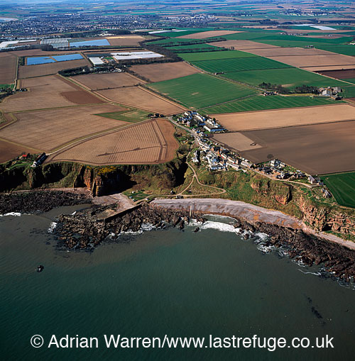 Auchmithie & Castle Rock (site of old fort), Lowlands, Scotland