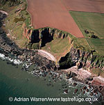 Cliffs at Red Head & site of fort, Lowlands, Scotland