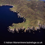 Cliffs on west coast, Shetland Mainland, Shetland Islands, Scotland