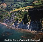 Eroding Cliffs near Charmouth, Dorset
