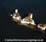 Old Harry Rocks, The Foreland or Handfast Point, Dorset