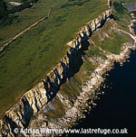 Worbarrow and Gad Cliff, Jurassic Coast, Dorset