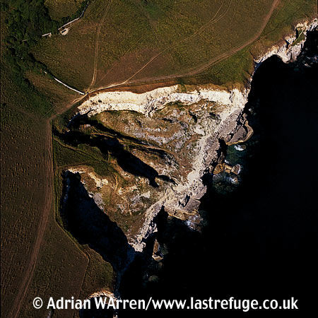 Dancing Ledge, Isle of Purbeck Heritage Coast, Dorset