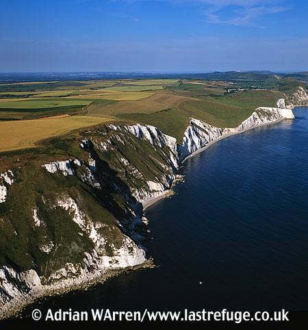 White Nothe, Jurassic Coast, Dorset