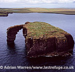 Dore Holm, a small islet off the south coast of Eshaness, in the west of Mainland, Shetland Islands, Scotland