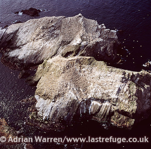 Isle of Vementry, Vementry SOUND, lookng from Shetland Mainland, Shetland Islands, Scotland
