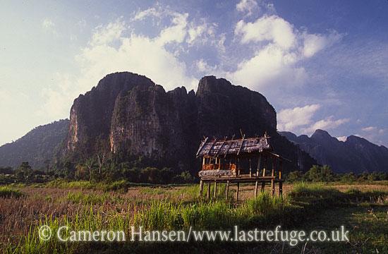 Landscape, Vang Vieng Province, Laos