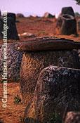 Plain Of Jars, 2000 Years Old, Phonsavan Province, Laos