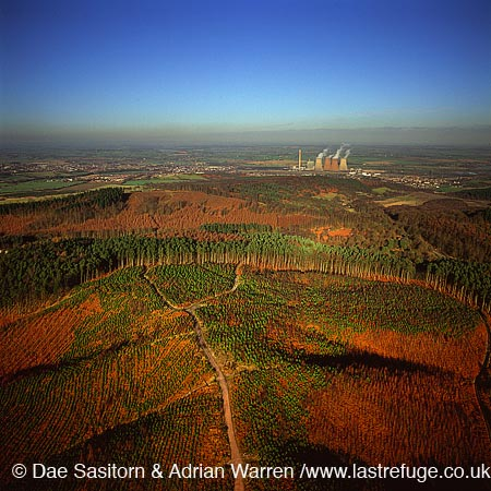 Cannock Chase - forestry with power station in background; moor land and forest, Staffordshire, England