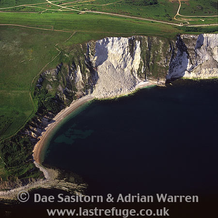 Dorset Coast, near Durdle Door, Dorset, England