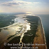 Blakeney point, Norfolk, East Anglia, England