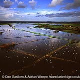 flood on the Somerset levels, Someset, England