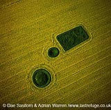 Barrows at North Down in rape field, near Calstone wellington, Wiltshire, England