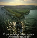 Old Harry Rocks, The Foreland or Handfast Point, Isle of Purbeck, Dorset, England