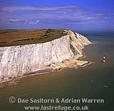 White Cliffs and lighthouse at Beachy Head, East Sussex, South east England, England