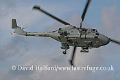 Small military transports: Westland WG 13 Lynx HAS.3S (ZD263 - 639), Royal Navy, Duxford, U.K., 8th October 2006-5175