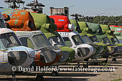 Warbirds and Museums: Mil Mi-2 Hoplites x9, Chernoye, Russia, 08-2005_8429