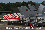 Display line of the Northrop F-5E Tiger IIs of the Patrouille Suisse, and assorted Lockheed-Martin Lockheed-Martin F-16s, Cazaux Air Base, Landes, France - June 2005