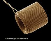Scanning Electron Micrograph (SEM): Catheter