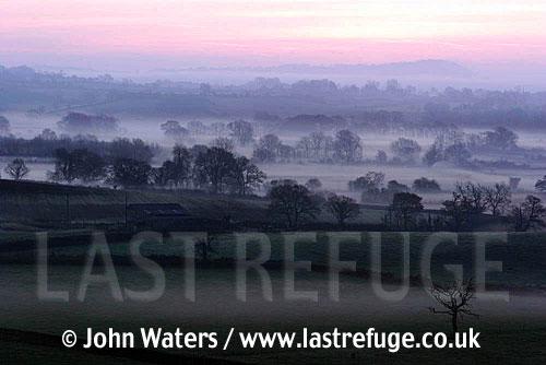 Dawn mist over farmland, Somerset, UK