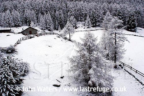 Summer farm house locked in Winter, Grachen, Switzerland, Europe