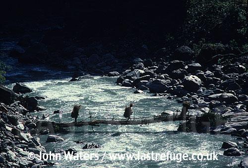 Carrying hay/fodder across the Kali Gandaki River, Near Beni, Nepal, Asia