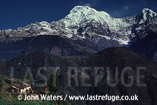 Annapurna South (7,237 m) provides backdrop to Ghandrung Village, Nepal, Asia