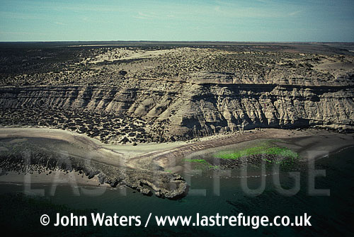 Coastal cliffs, Peninsula Valdes, Patagonia, Argentina