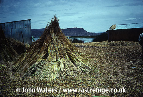 Uru Indian reed houses, Lake Titicaca, Peru