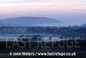 Dawn mist over farmland, Somerset, UK