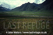 Trans, Alaska pipeline, Attigun valley, in August, Alaska, USA