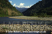 River Valley Himalaya foothills, Arunachal Pradesh, India
