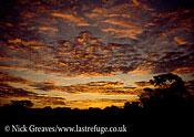Hwange sunset, Hwange National Park, Zimbabwe