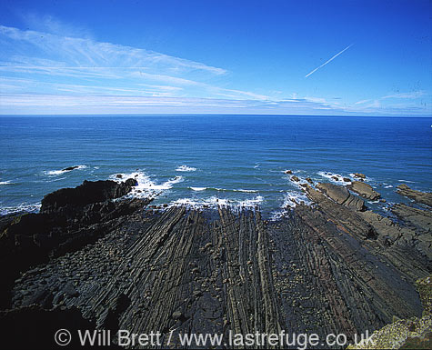 Broad Beach, north of Hartland quay showing eroded vertical rock strata amongst sand at low tide