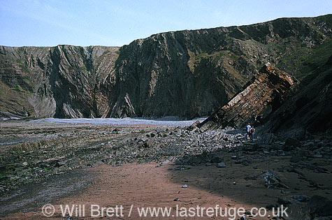 Rock strata patterns in cliffs and eroded rock strata forming a passage at Hartland quay beach