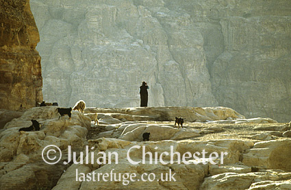 Bedouin woman calling in her flock at evening, in the hills near Petra, Jordan