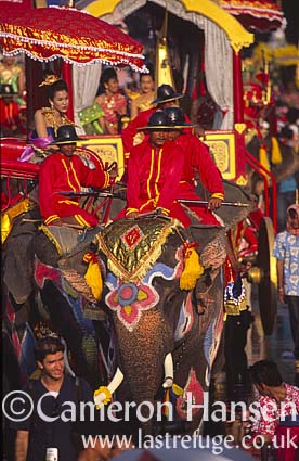 Asian Elephants - Songkran Festival (Water Festival), Bangkok, Thailand